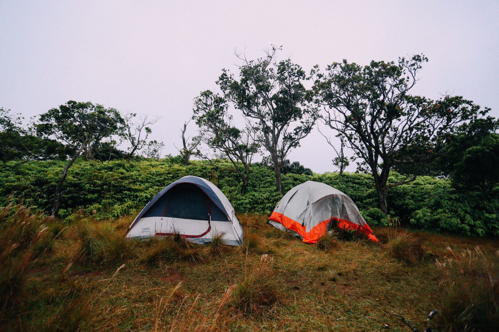 C&ing on a Cliff in Kauai & Camping on a Cliff in Kauai - Aspyn Ovard